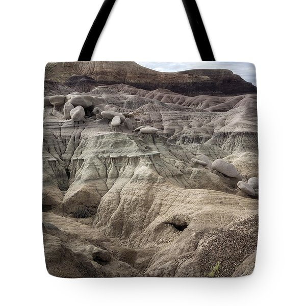 Tote Bag featuring the photograph Geology Lesson 2 by Melany Sarafis