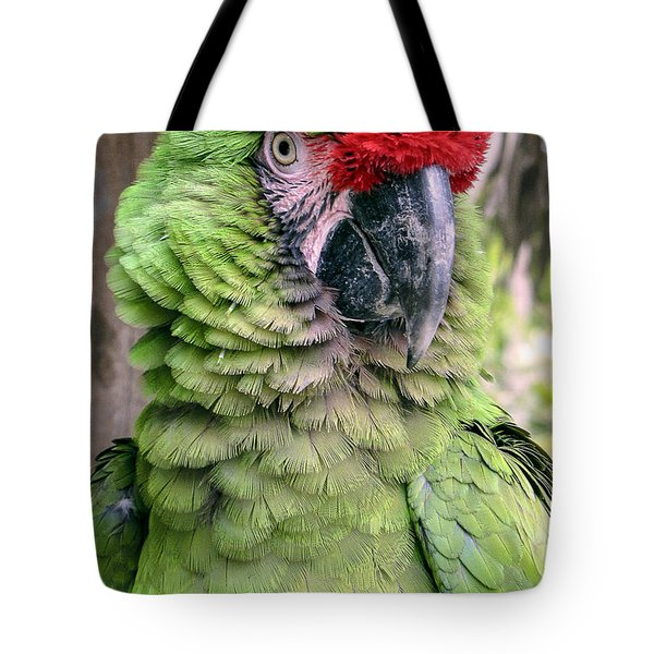 George The Parrot Tote Bag