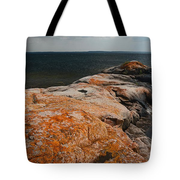 Georgian Bay Rocks Lichen-3675 Tote Bag