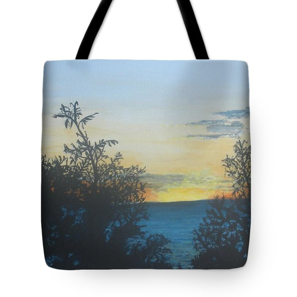 Tote Bag featuring the painting Georgian Bay Sunset by Betty-Anne McDonald