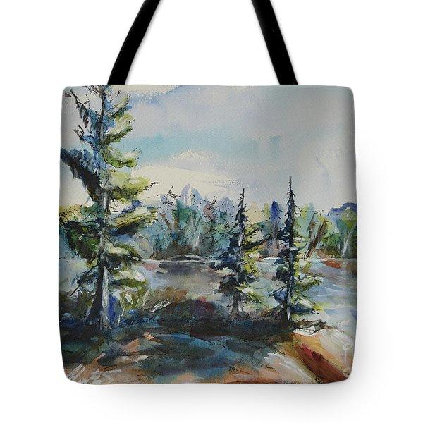 Georgian View Tote Bag by Heather Kertzer