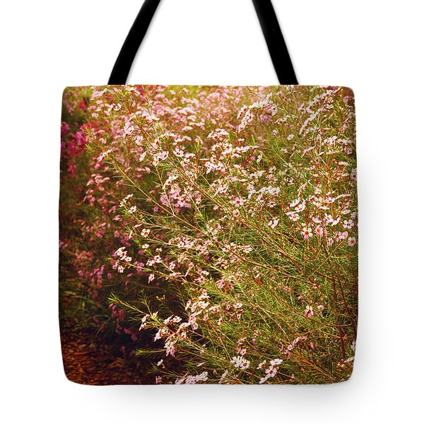 Geraldton Wax Shades Tote Bag