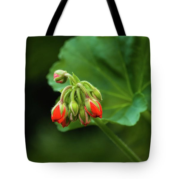 Tote Bag featuring the photograph Geranium Buds by Cristina Stefan