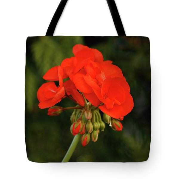 Tote Bag featuring the photograph Geranium  by Cristina Stefan
