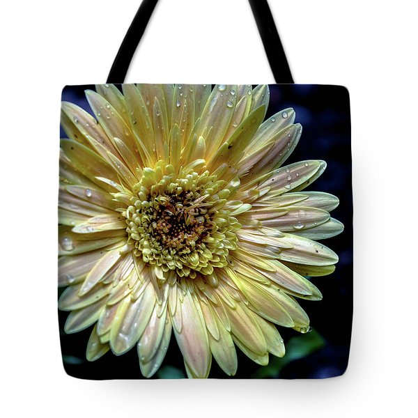 Tote Bag featuring the photograph Gerber by Karen Kersey