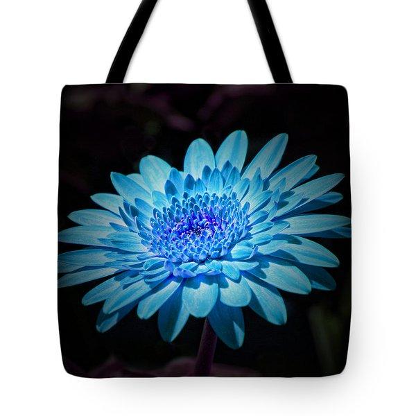 Gerbera Daisy Art Tote Bag