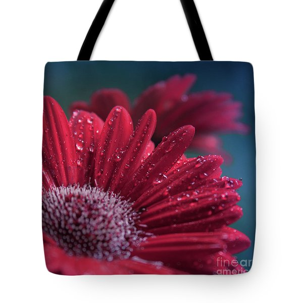 Tote Bag featuring the photograph Gerbera Red Jewel by Sharon Mau