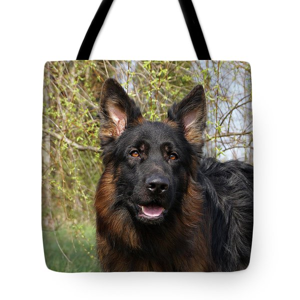 Tote Bag featuring the photograph German Shepherd Close Up by Sandy Keeton