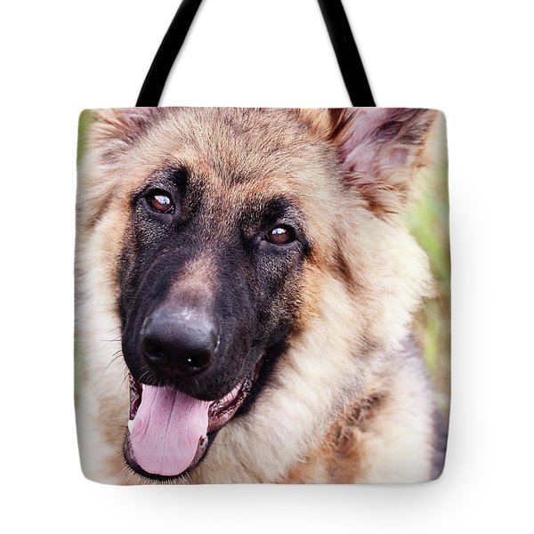 German Shepherd Dog Tote Bag by Stephanie Frey