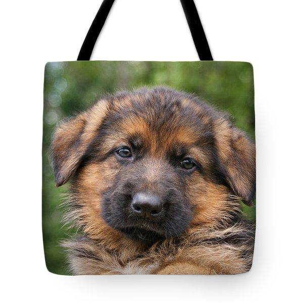 German Shepherd Puppy II Tote Bag by Sandy Keeton