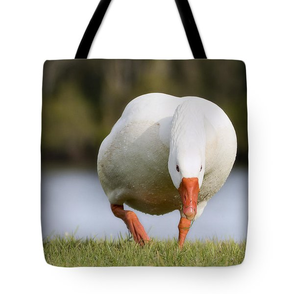 Tote Bag featuring the photograph Get Out Of My Way 01 by Kevin Chippindall
