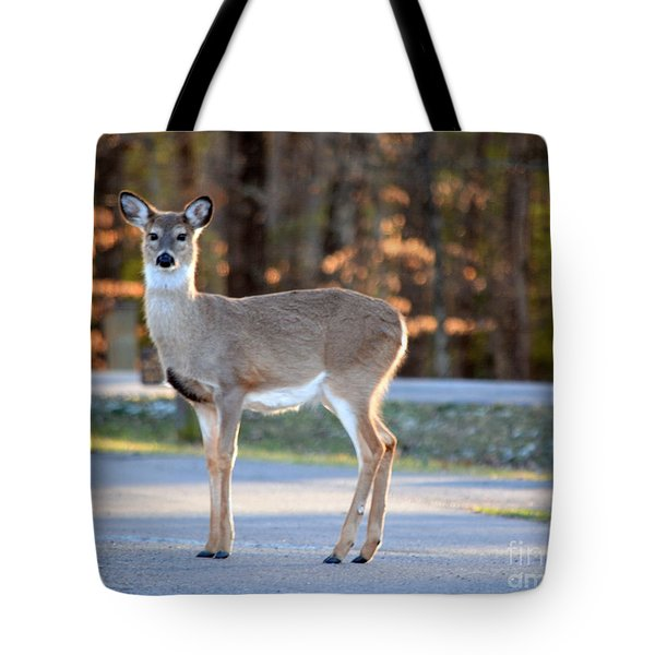 Getting Ready For Winter Tote Bag by Brenda Bostic