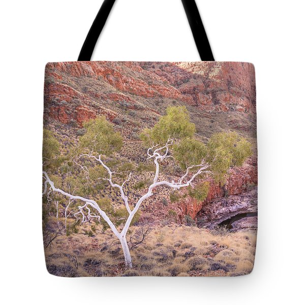 Ghost Gum Tote Bag