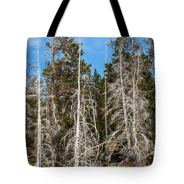 Tote Bag featuring the photograph Ghost Pines At Yellowstone National Park by Lon Dittrick