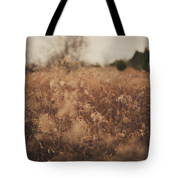 Tote Bag featuring the photograph Ghost by Shane Holsclaw