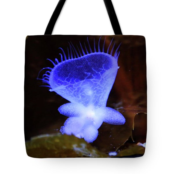 Tote Bag featuring the photograph Ghost Heart by T A Davies