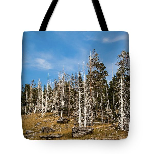 Tote Bag featuring the photograph Ghost Trees At Yellowstone by Lon Dittrick