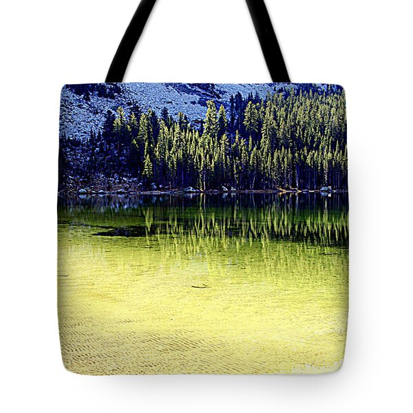 Ghostly Reflections Tote Bag