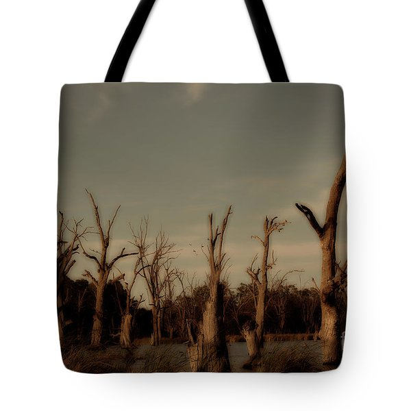 Tote Bag featuring the photograph Ghostly Trees by Douglas Barnard