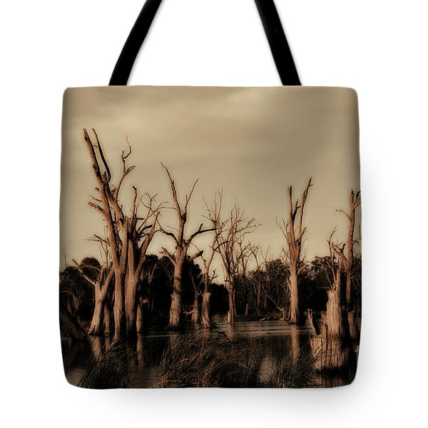 Tote Bag featuring the photograph Ghostly Trees V2 by Douglas Barnard