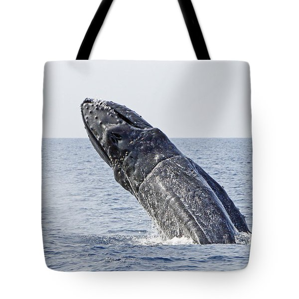 Giant Breach Tote Bag by Shoal Hollingsworth