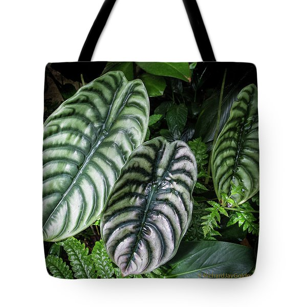Tote Bag featuring the photograph Giant Calladium Leaves by Richard Goldman