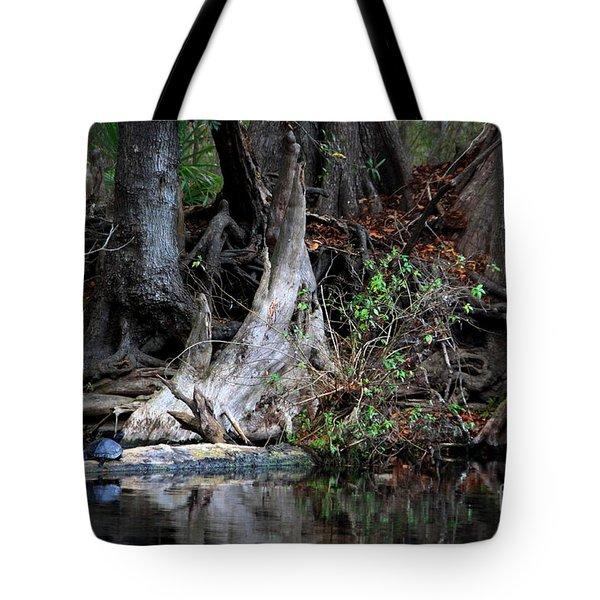 Giant Cypress Knees Tote Bag