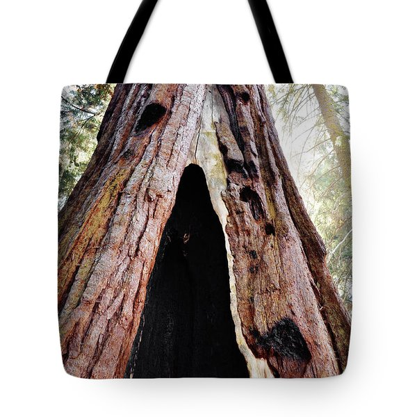 Tote Bag featuring the photograph Giant Forest Giant Sequoia by Kyle Hanson