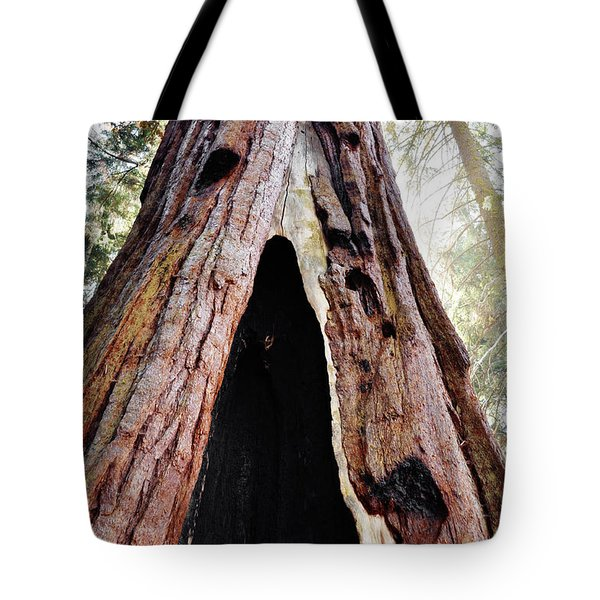 Giant Forest Giant Sequoia Tote Bag