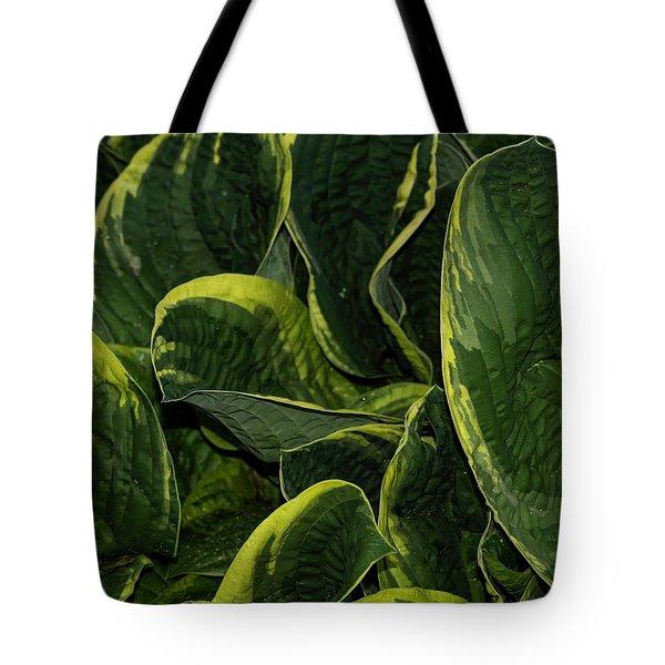 Giant Hosta Closeup Tote Bag