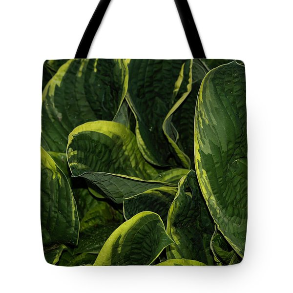 Giant Hosta Closeup Tote Bag