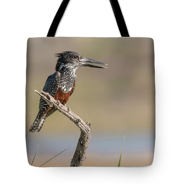 Giant Kingfisher Tote Bag