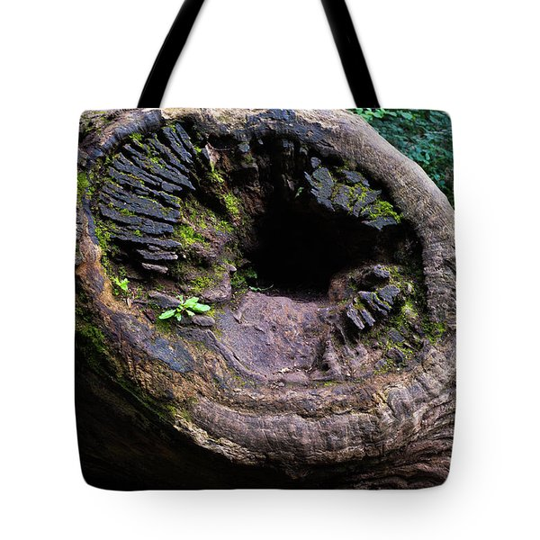 Tote Bag featuring the photograph Giant Knot In Tree by Scott Lyons