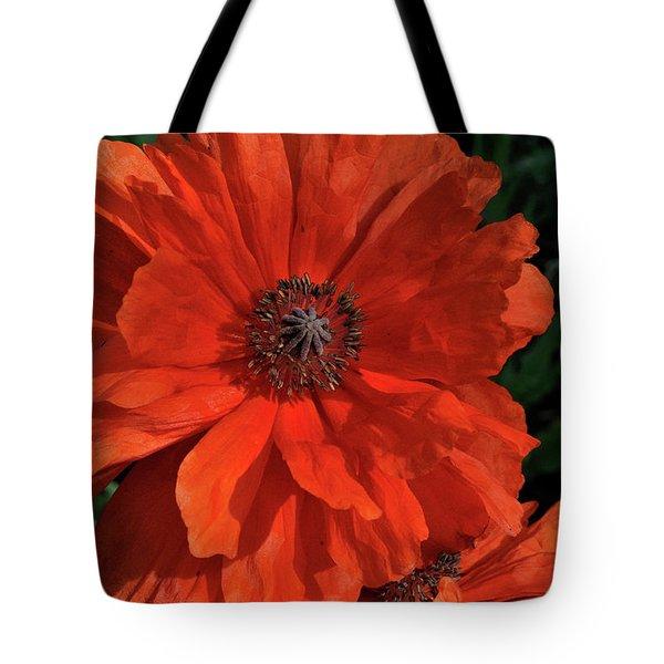 Giant Mountain Poppy Tote Bag