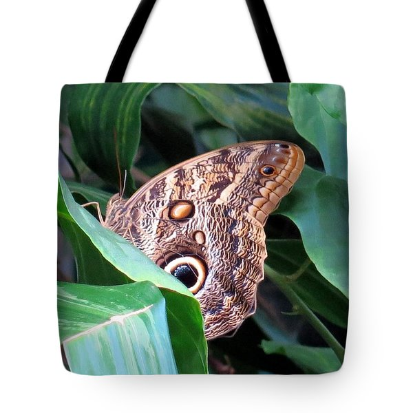 Giant Owl Butterfly Tote Bag