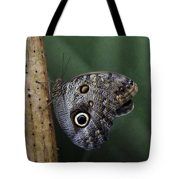 Giant Owl Butterfly On Screw Pine Tote Bag