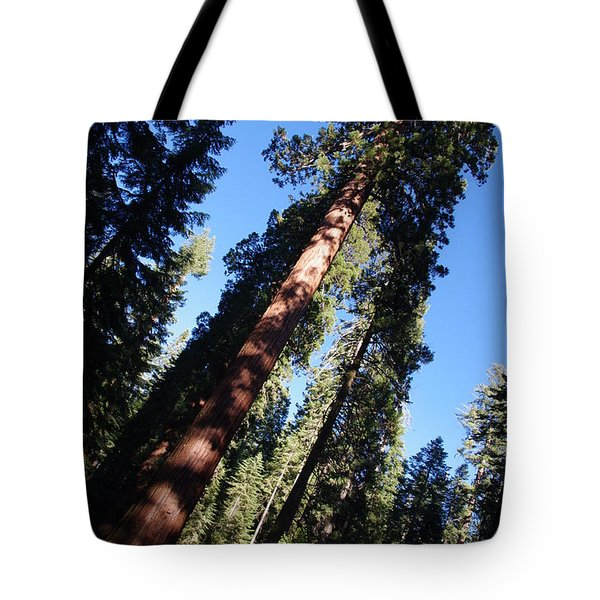 Giant Redwood Trees Tote Bag by Jeff Lowe