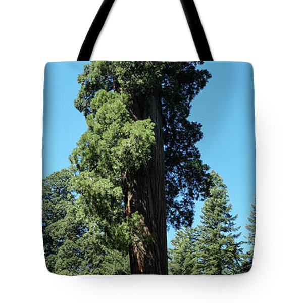 Giant Sequoia, Sequoia Np, Ca Tote Bag