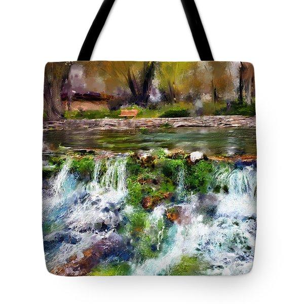 Giant Springs 1 Tote Bag by Susan Kinney