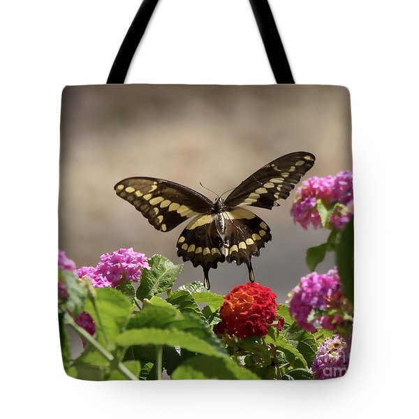 Giant Swallowtail Butterfly Tote Bag by Anne Rodkin