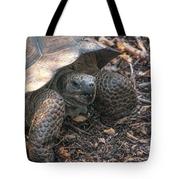 Giant Tortoise At Urbina Bay On Isabela Island  Galapagos Islands Tote Bag