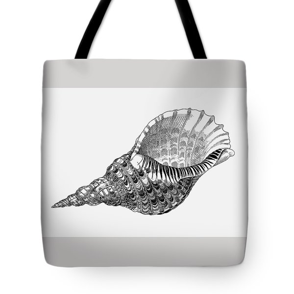 Tote Bag featuring the drawing Giant Triton Shell by Judith Kunzle