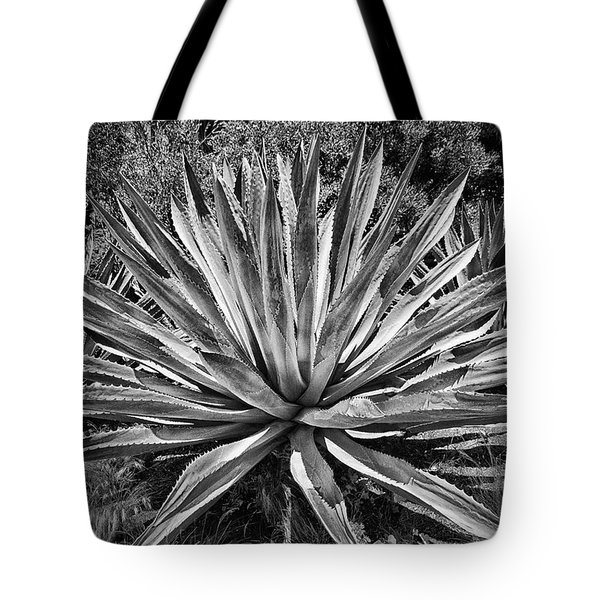 Tote Bag featuring the photograph Giant Yucca Bw by Joseph Hollingsworth