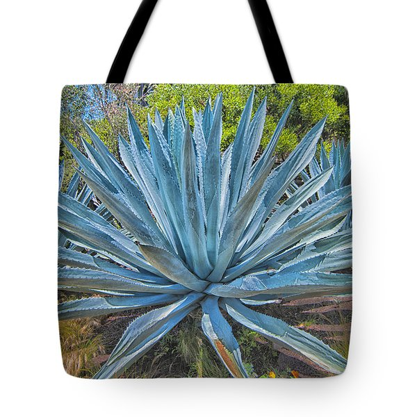 Tote Bag featuring the photograph Giant Yucca by Joseph Hollingsworth