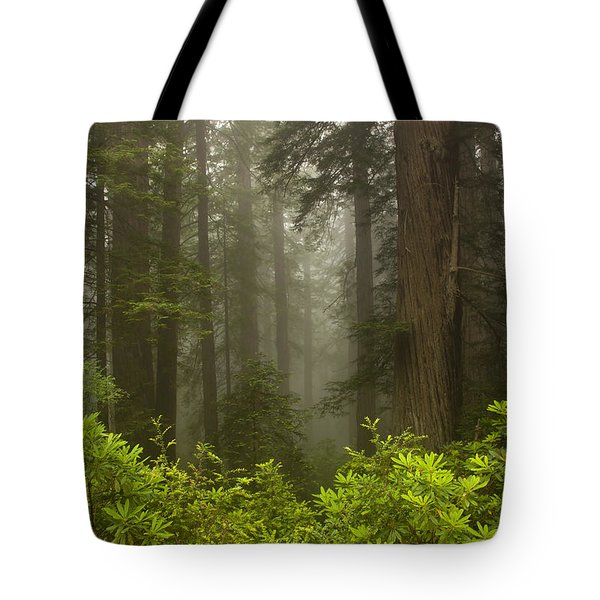Giants In The Mist Tote Bag