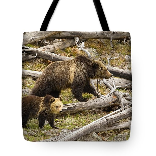 Tote Bag featuring the photograph Gibbon Pair by Aaron Whittemore