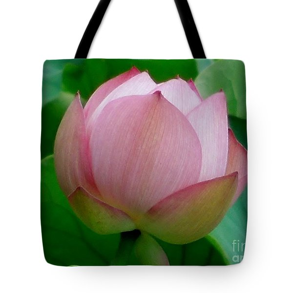 Gift Of God's Creation Tote Bag