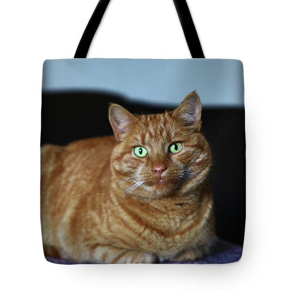 Tote Bag featuring the photograph Ginger Marmalade Cat by Nareeta Martin