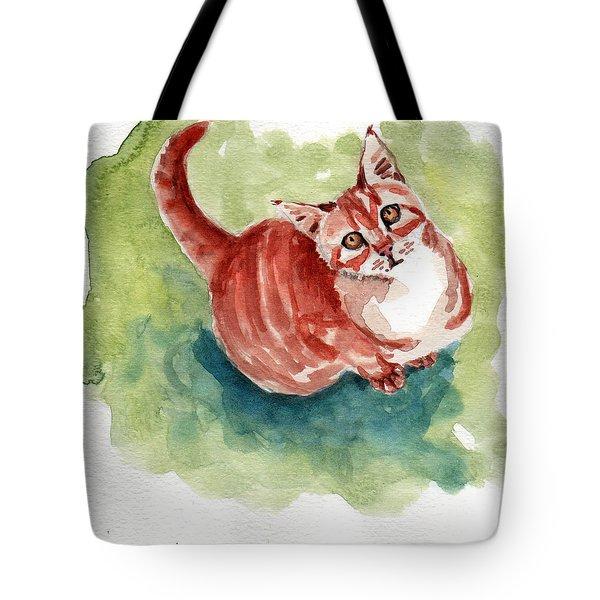 Ginger Tabby 8 Tote Bag