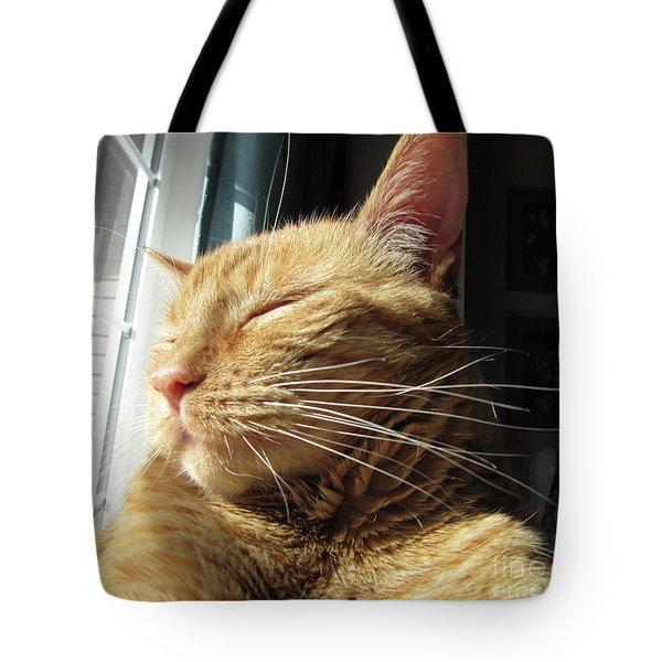 Ginger Tabby Tote Bag
